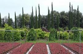 Pistoia giardino d'Italia e di biodiversità