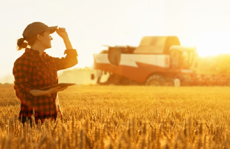 Dl sostegni ad agroalimentare