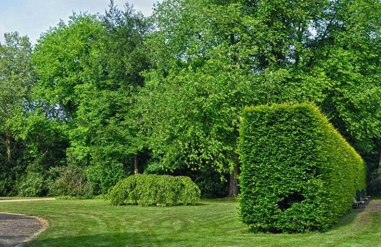 Giardini by Assoverde e Confagricoltura