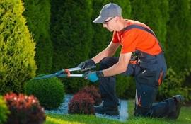 Confagricoltura: ripristinare le attività di manutenzione del verde