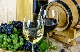 vino e vitivinicoltura