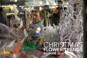 Espositori Christmas Flower Trends 2014_8