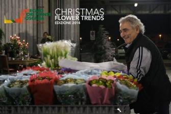 Espositori Christmas Flower Trends 2014_9