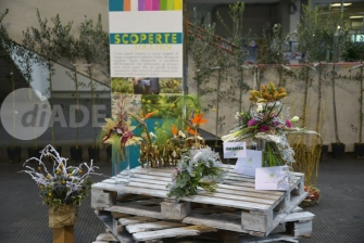 Scoperte Lucchesi, Christmas Flower trends, 29 e 30 novembre 2015_1