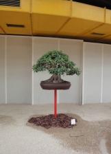 Euroflora 2011_4