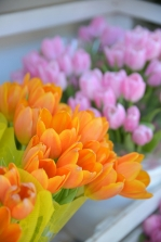 In giro per negozi tra piante e fiori