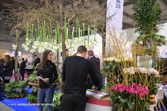 MyPlant & Garden 2018-8