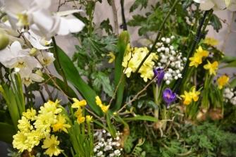 """Dimostrazione fioristi Myplant & Garden"""" - 22, 23, 24 febbraio 2017_3"""