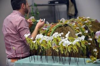Salon du Végétal, fiori recisi_3