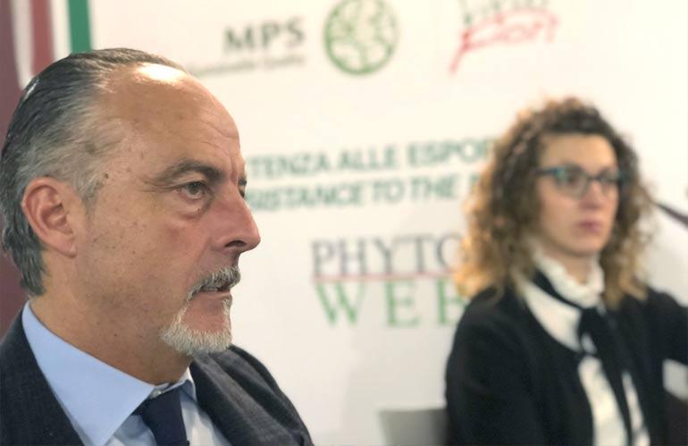 Anve: Ena ha approvato un documento che frena le speculazioni sulla Xylella