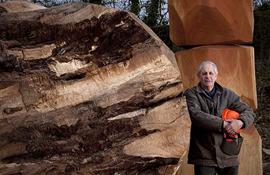David Nash: il linguaggio dell'albero