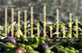 Produzione d'olio Ue: calo Italia (-26%), balzo Spagna (+27%)