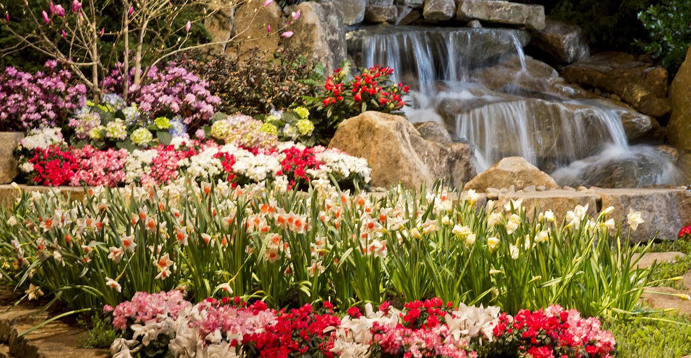 Northwest flower garden show oltremare floraviva - Northwest flower and garden show ...